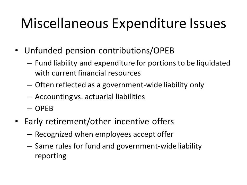 Miscellaneous Expenditure Issues