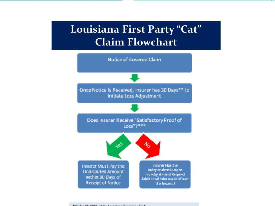Louisiana First Party Cat Claim Flowchart