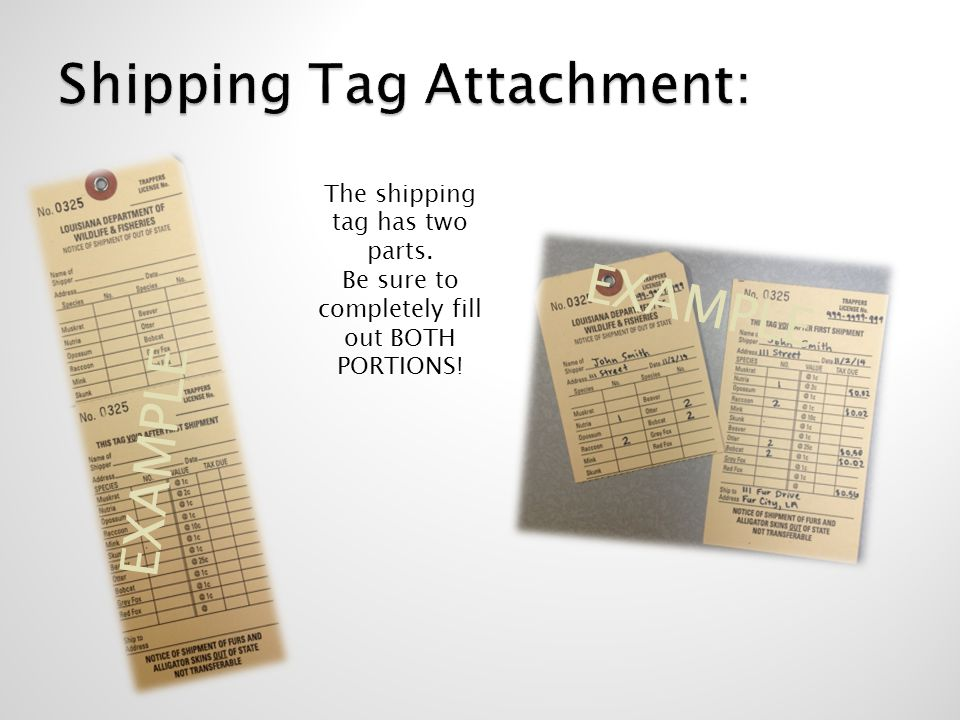 Shipping Tag Attachment: