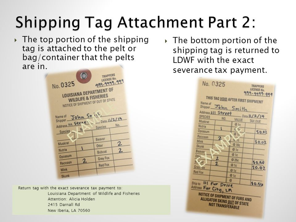 Shipping Tag Attachment Part 2: