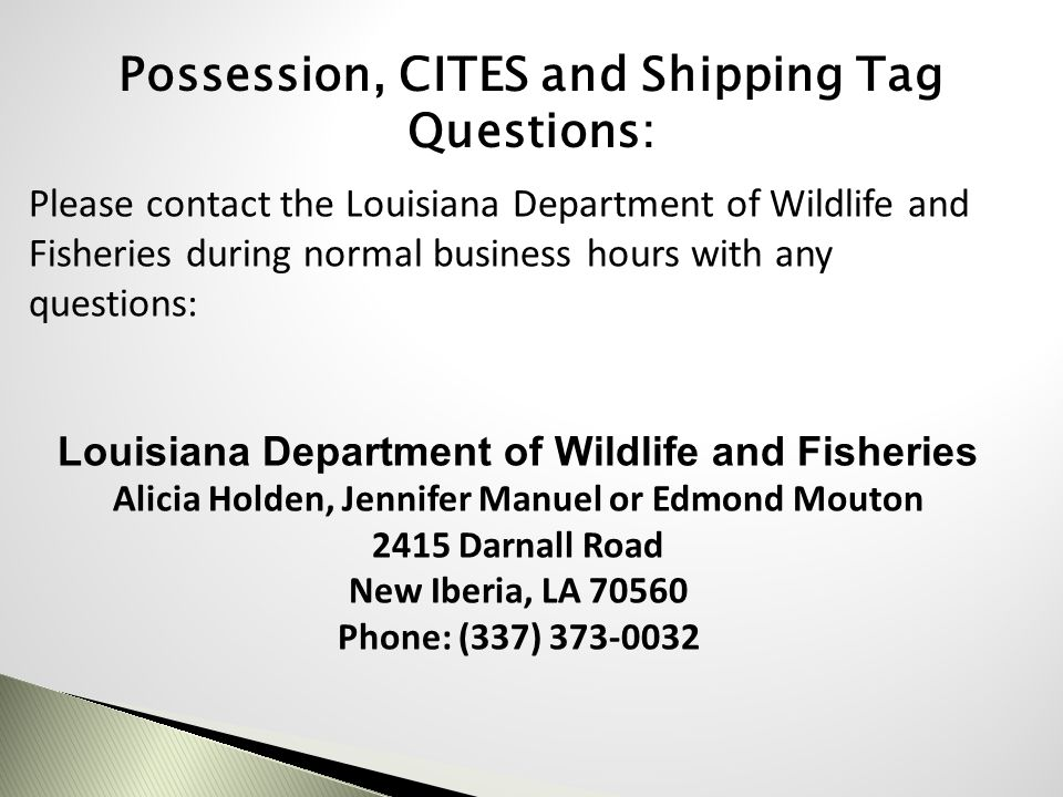 Possession, CITES and Shipping Tag Questions: