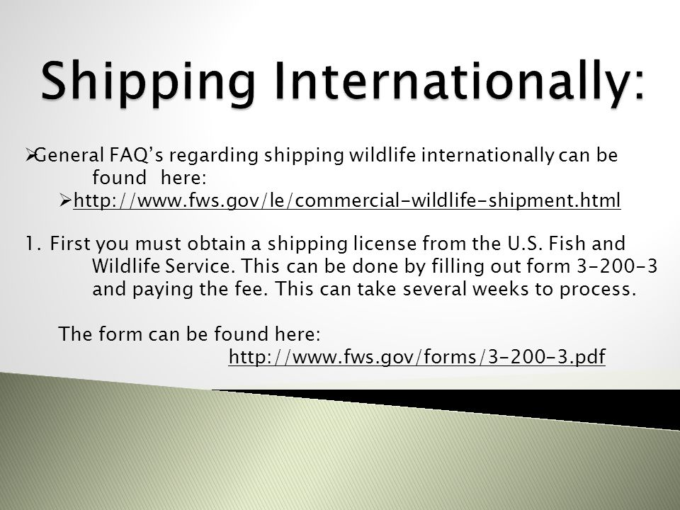 Shipping Internationally:
