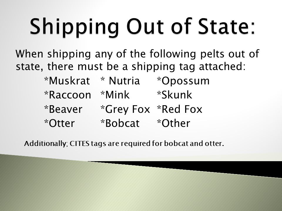 Shipping Out of State: When shipping any of the following pelts out of state, there must be a shipping tag attached: