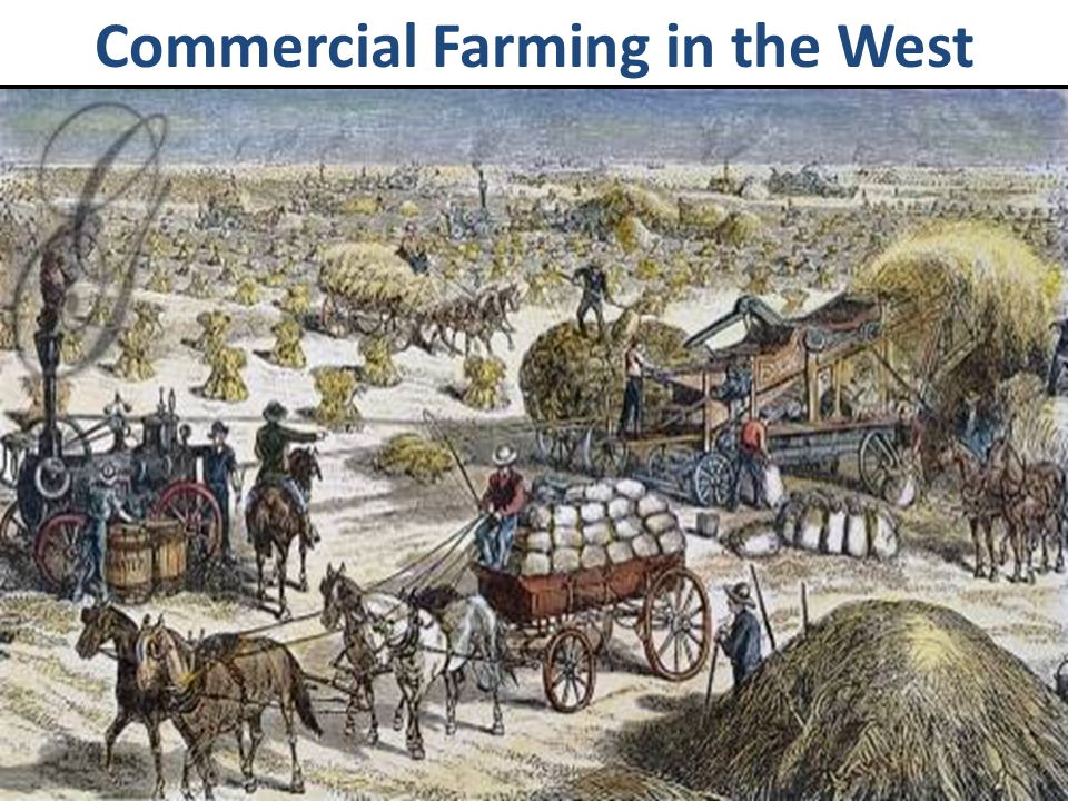 Commercial Farming in the West
