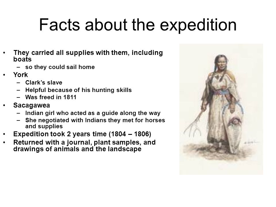Facts about the expedition