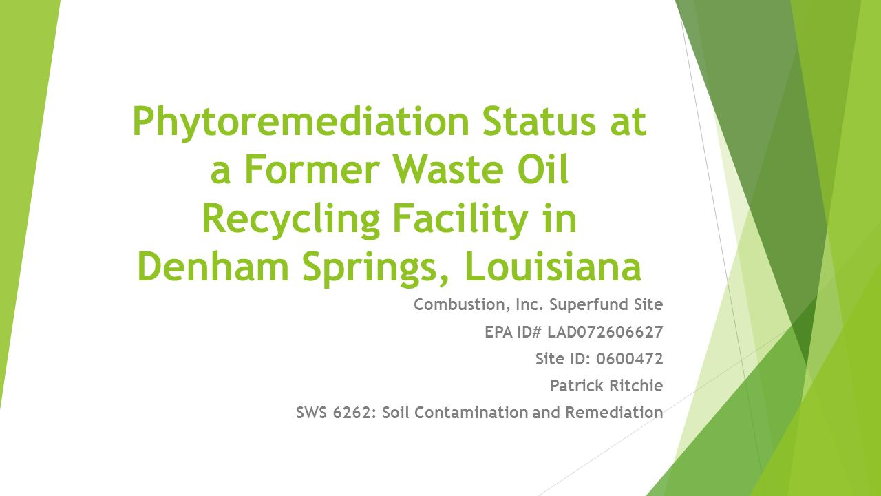 Phytoremediation Status at a Former Waste Oil Recycling Facility in Denham Springs, Louisiana