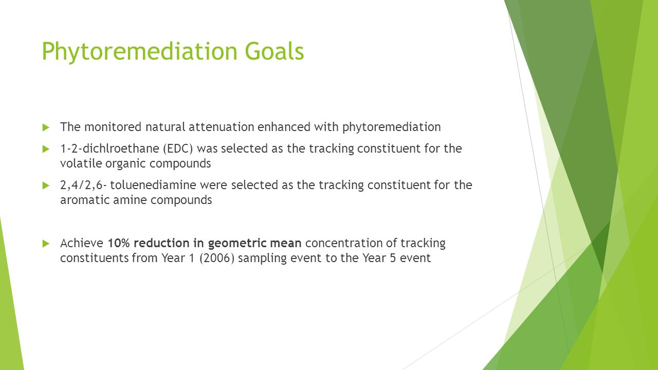 Phytoremediation Goals