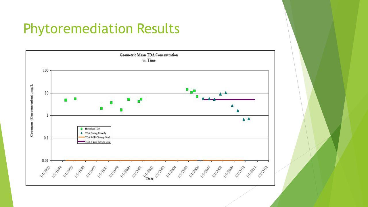 Phytoremediation Results