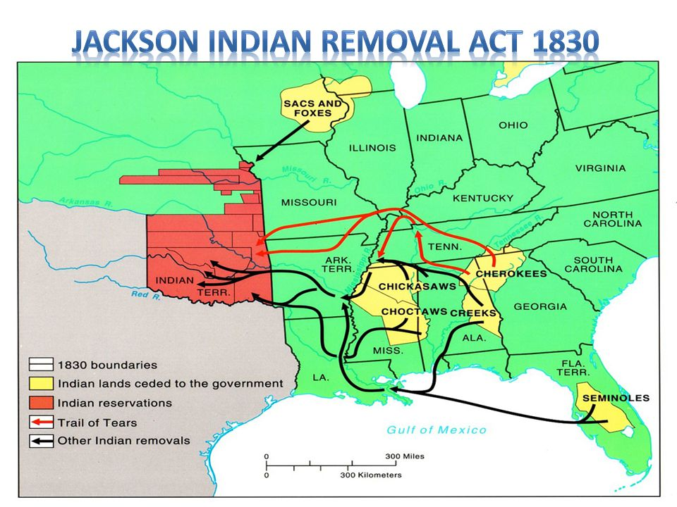Jackson Indian Removal Act 1830
