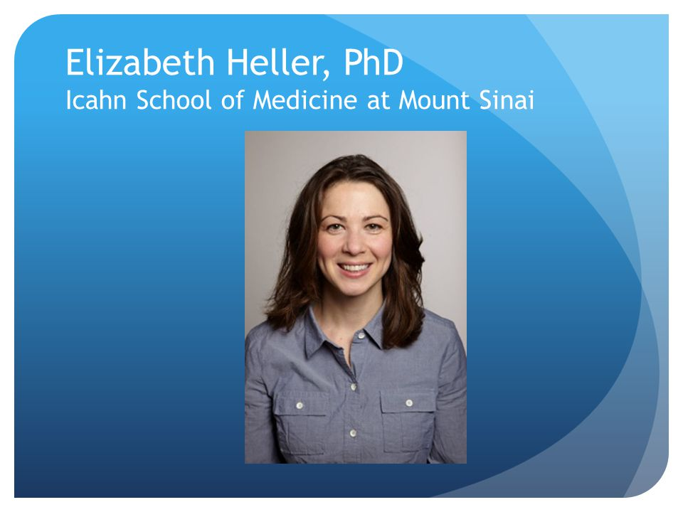 Elizabeth Heller, PhD Icahn School of Medicine at Mount Sinai