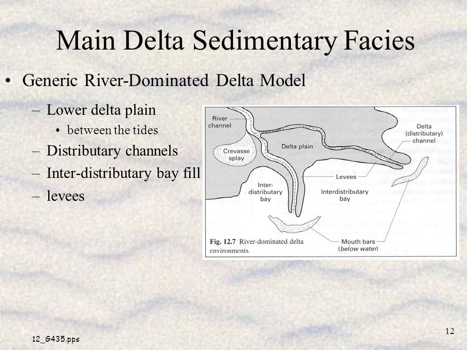 Main Delta Sedimentary Facies