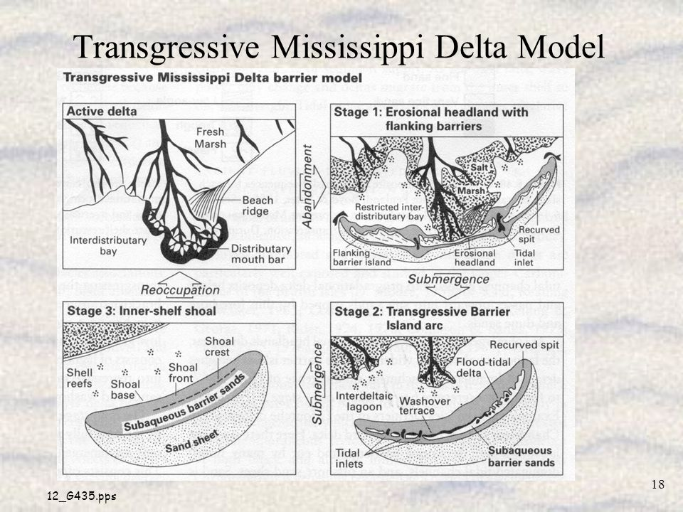Transgressive Mississippi Delta Model