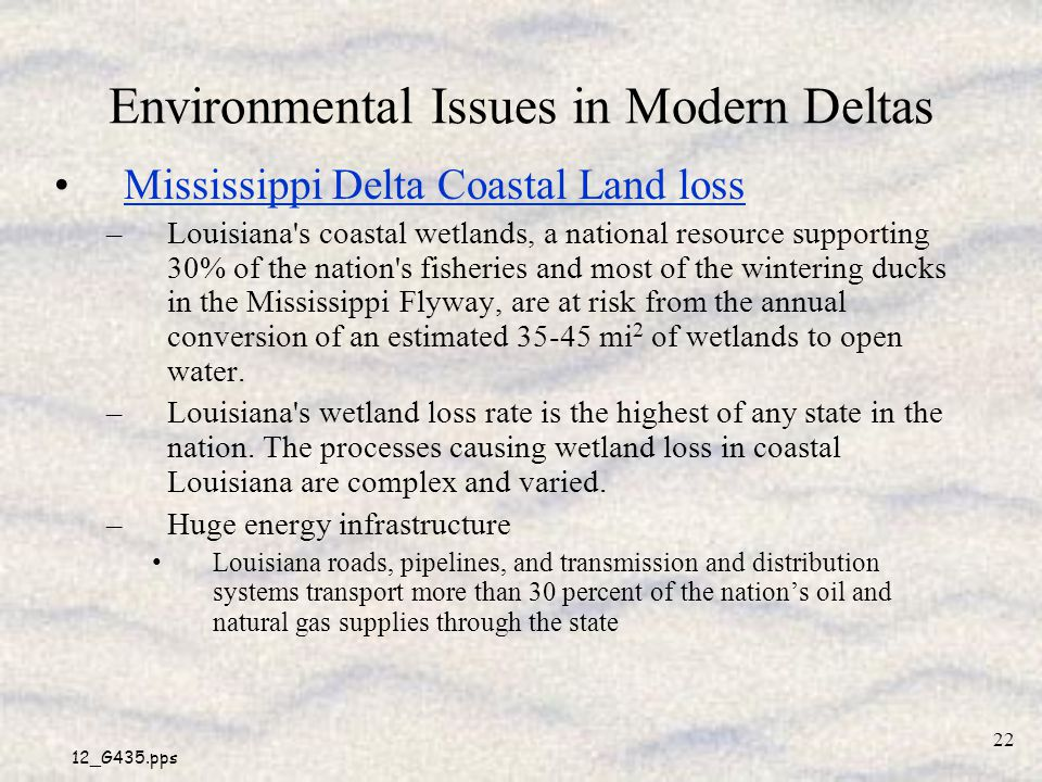 Environmental Issues in Modern Deltas
