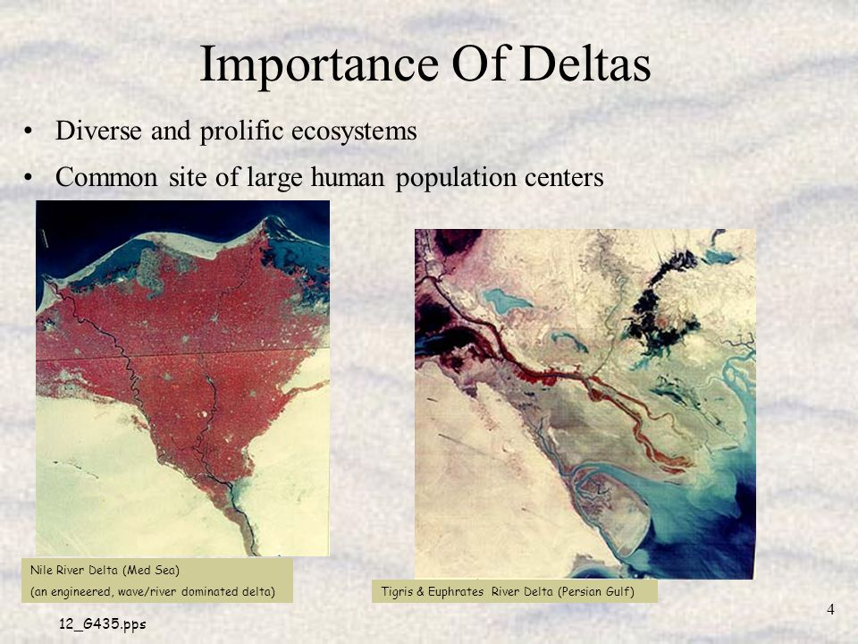 Importance Of Deltas Diverse and prolific ecosystems