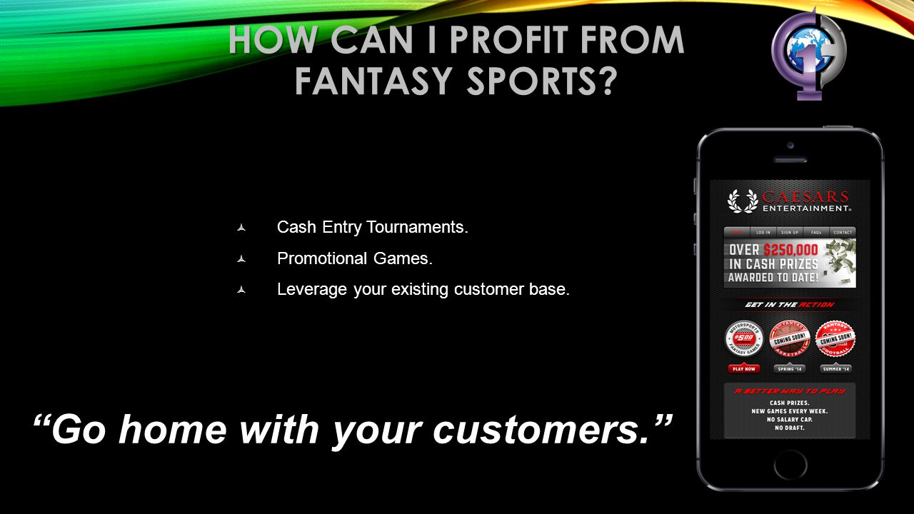 How can I profit from fantasy sports