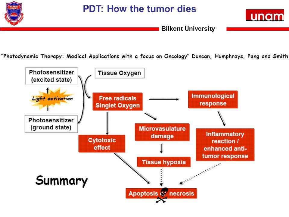 Bilkent University PDT: How the tumor dies