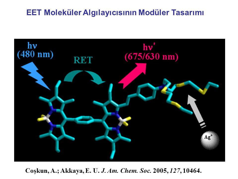 EET Moleküler Algılayıcısının Modüler Tasarımı