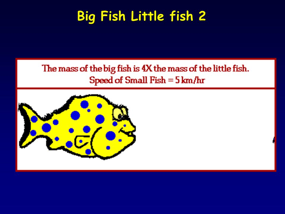 Big Fish Little fish 2