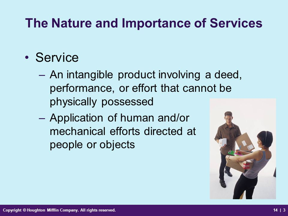 The Nature and Importance of Services