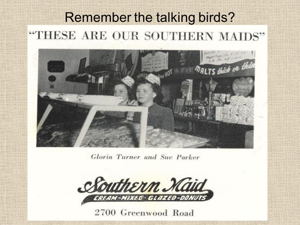 Remember the talking birds