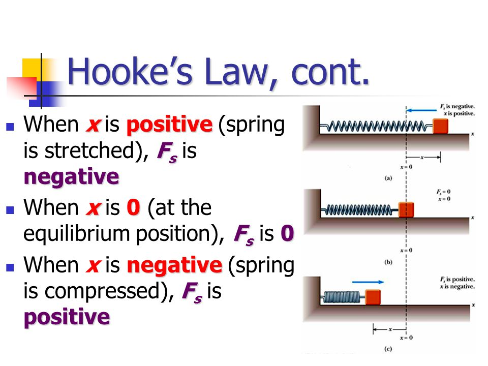 Hooke's Law, cont. When x is positive (spring is stretched), Fs is negative. When x is 0 (at the equilibrium position), Fs is 0.