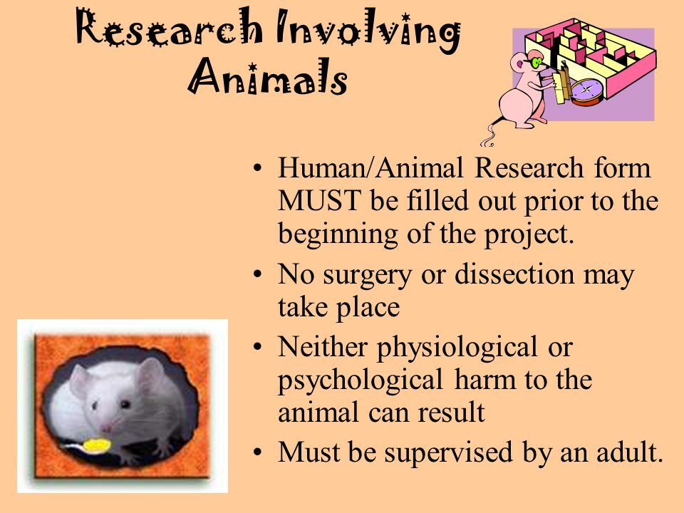 Research Involving Animals