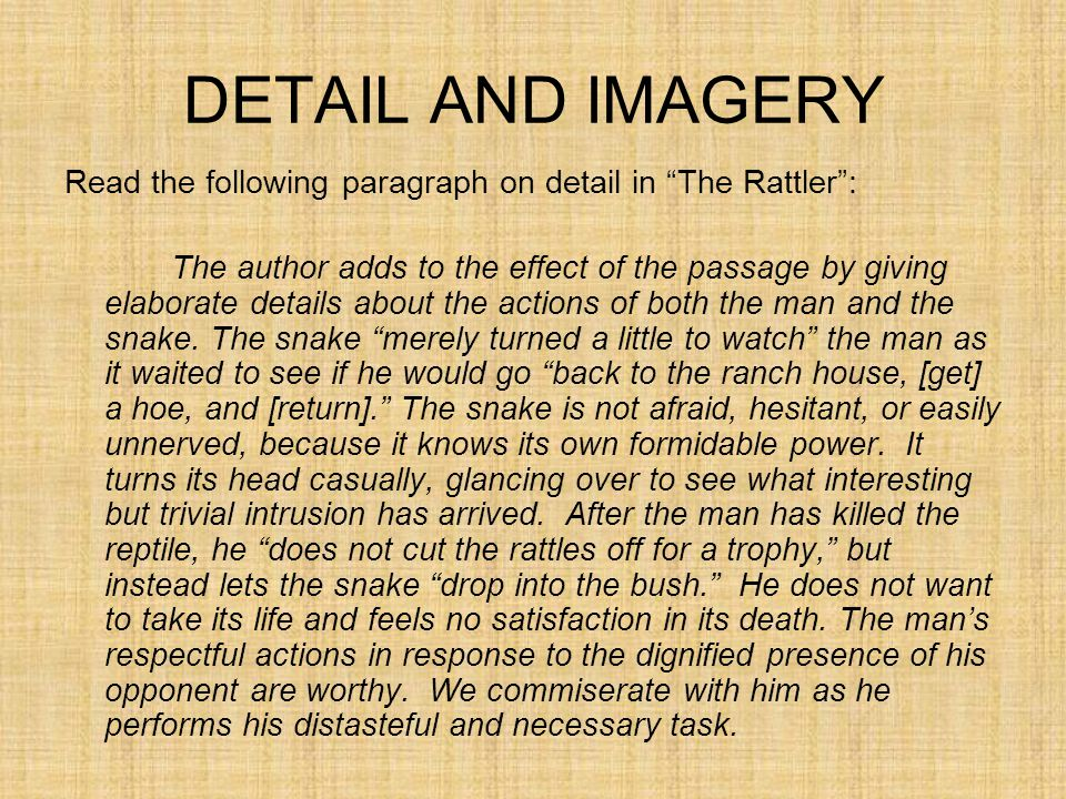 DETAIL AND IMAGERY Read the following paragraph on detail in The Rattler :