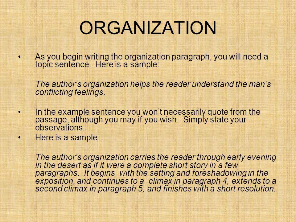 ORGANIZATION As you begin writing the organization paragraph, you will need a topic sentence. Here is a sample: