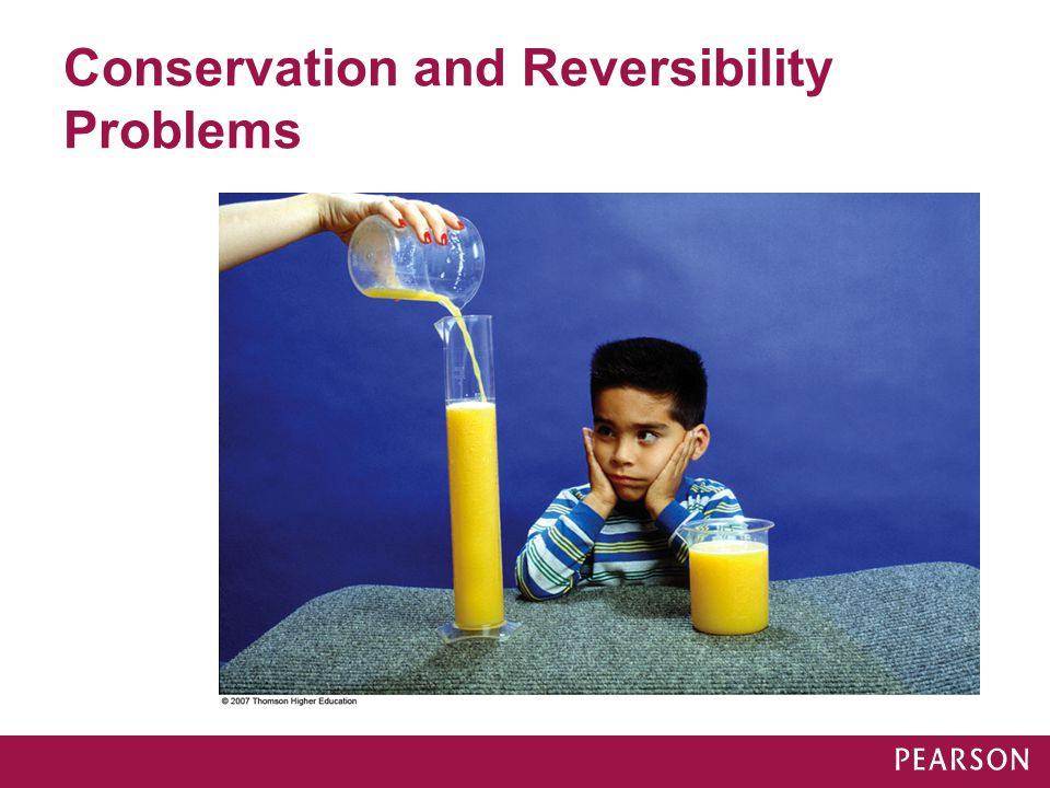 Conservation and Reversibility Problems