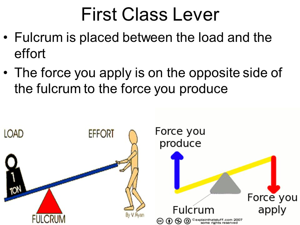 First Class Lever Fulcrum is placed between the load and the effort