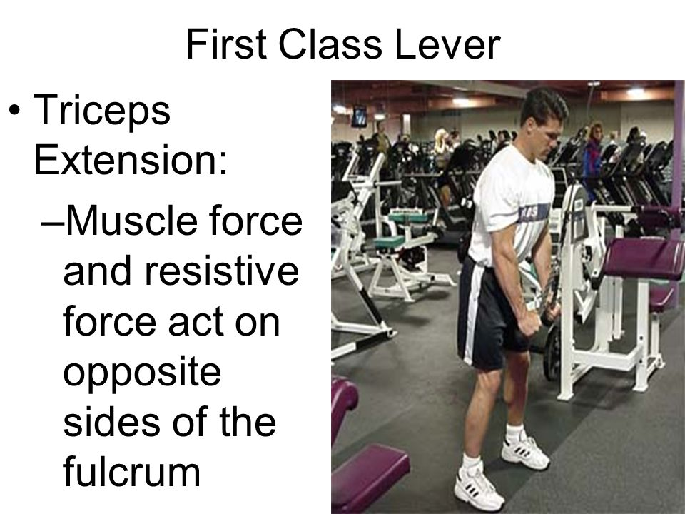 First Class Lever Triceps Extension: Muscle force and resistive force act on opposite sides of the fulcrum.