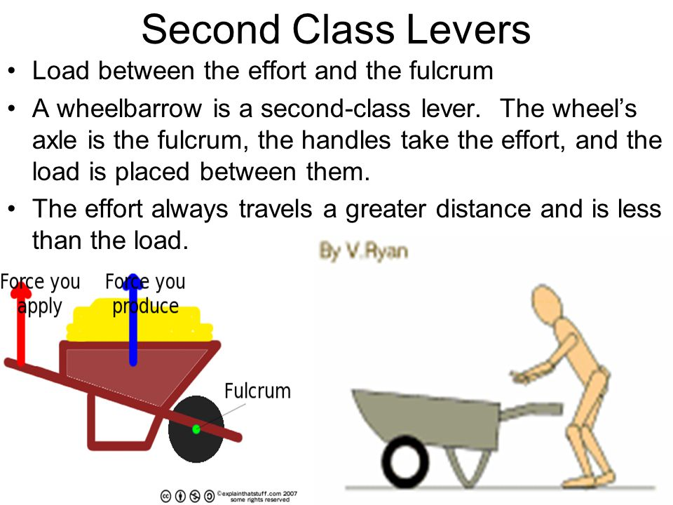 Second Class Levers Load between the effort and the fulcrum