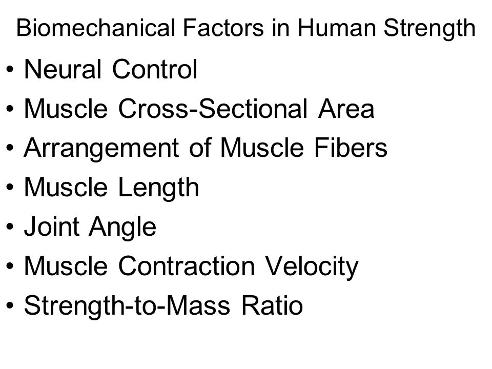 Biomechanical Factors in Human Strength