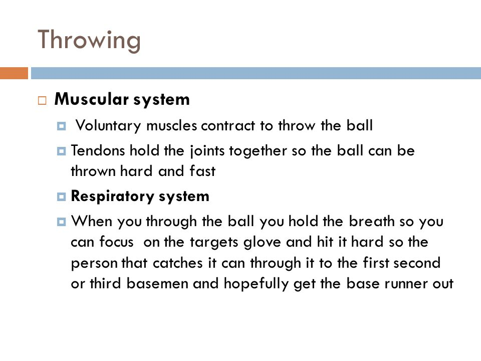 Throwing Muscular system Voluntary muscles contract to throw the ball