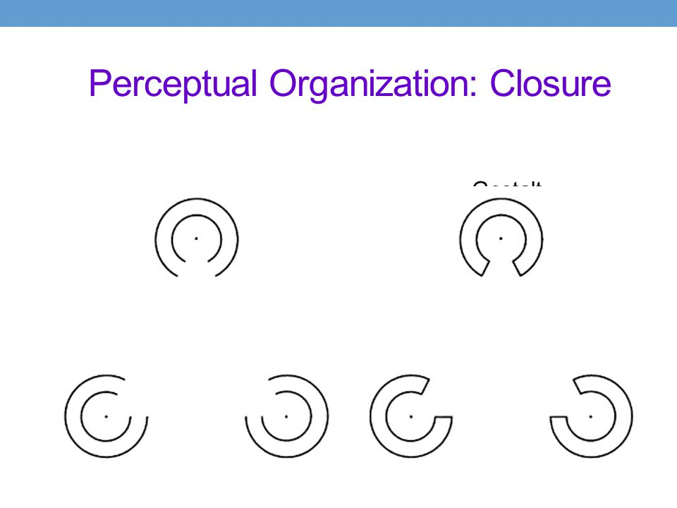 Perceptual Organization: Closure