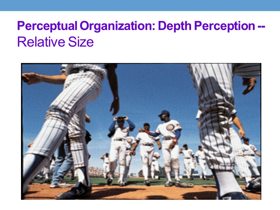 Perceptual Organization: Depth Perception -- Relative Size