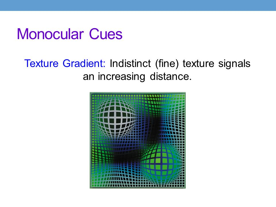 Monocular Cues Texture Gradient: Indistinct (fine) texture signals an increasing distance.