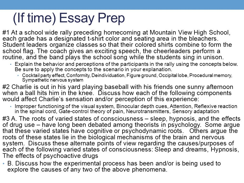 (If time) Essay Prep