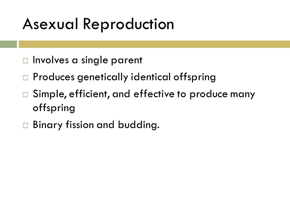 Asexual Reproduction Involves a single parent