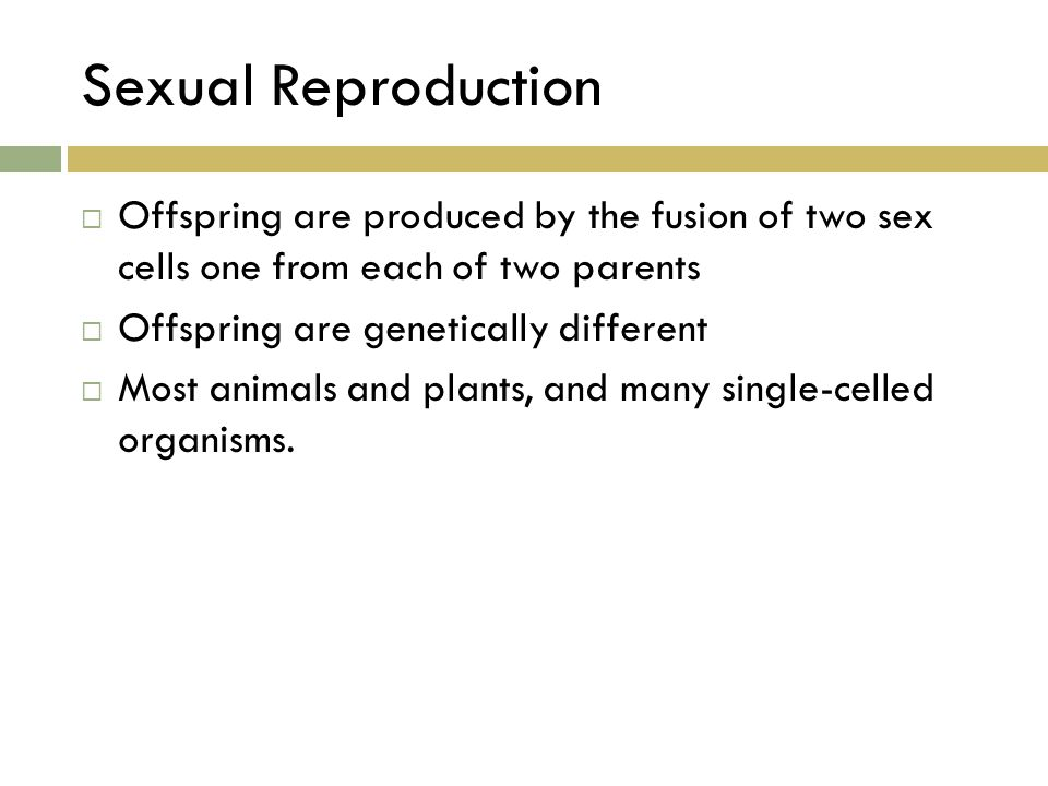 Sexual Reproduction Offspring are produced by the fusion of two sex cells one from each of two parents.