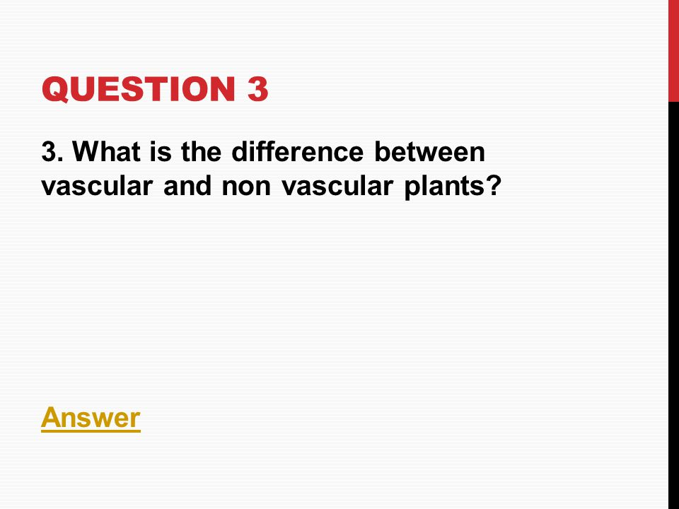 Question 3 3. What is the difference between vascular and non vascular plants Answer