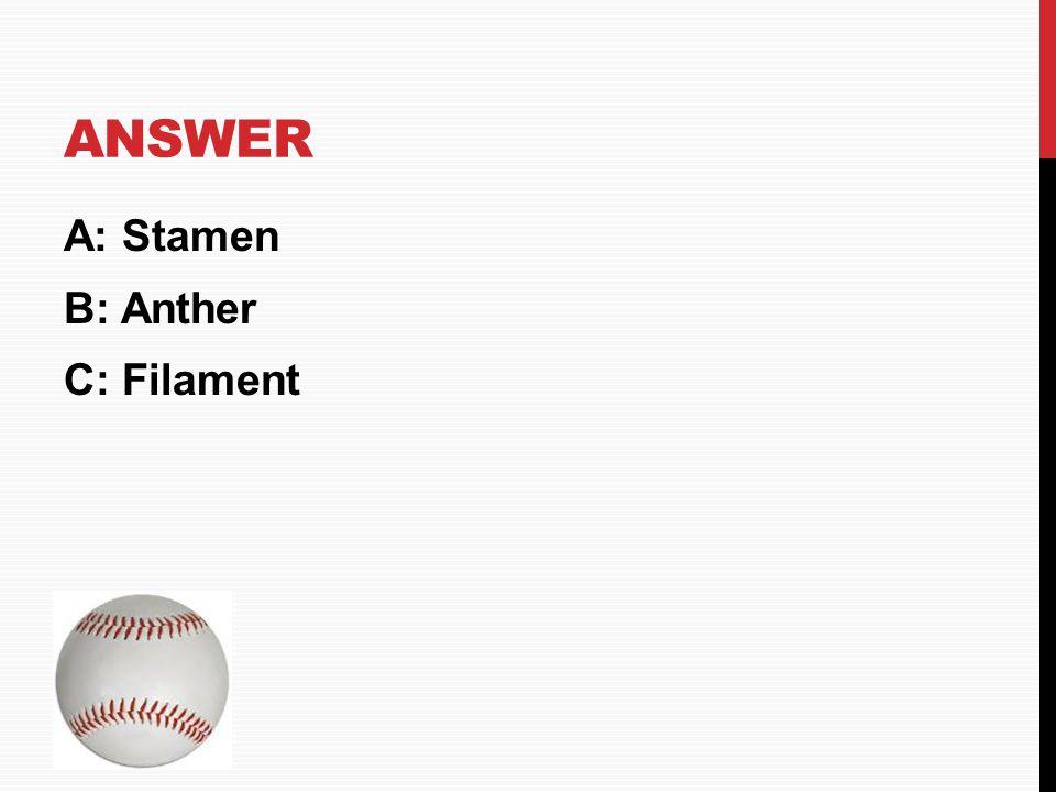 Answer A: Stamen B: Anther C: Filament HOME