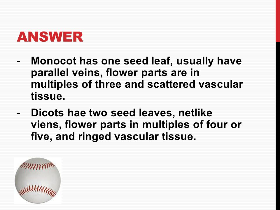 Answer Monocot has one seed leaf, usually have parallel veins, flower parts are in multiples of three and scattered vascular tissue.