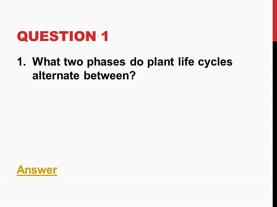 Question 1 What two phases do plant life cycles alternate between