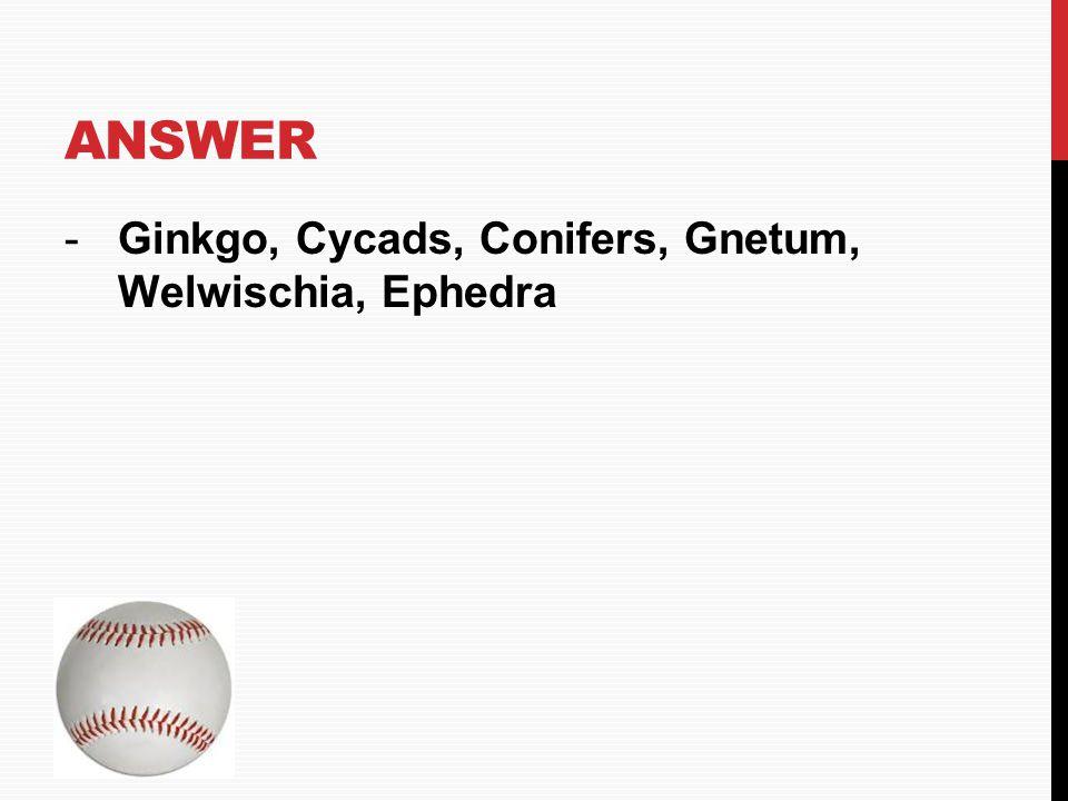 Answer Ginkgo, Cycads, Conifers, Gnetum, Welwischia, Ephedra HOME