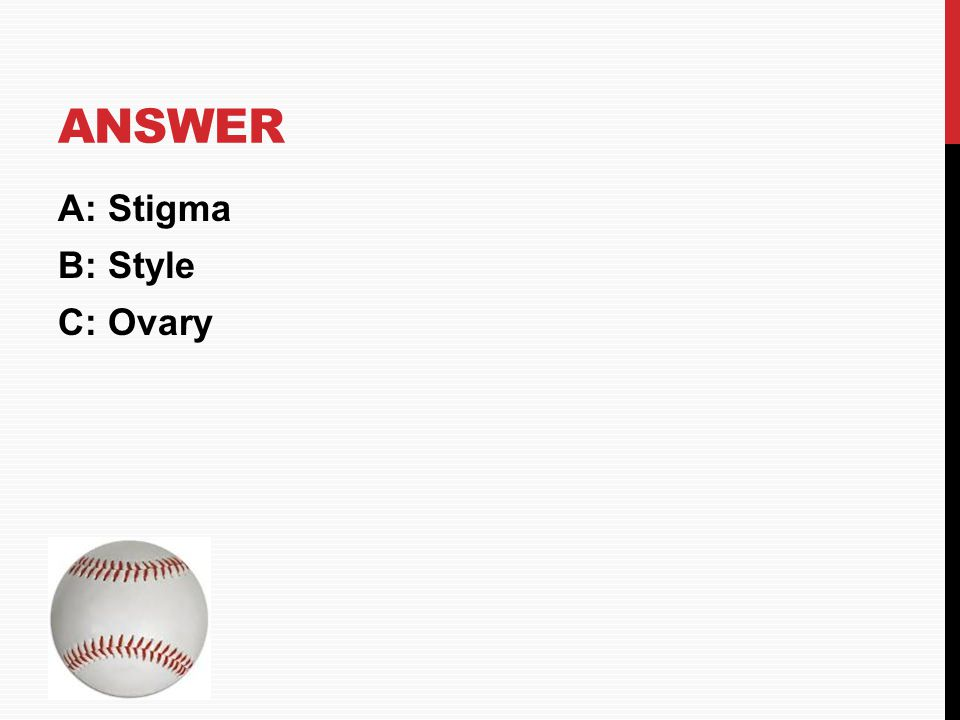 Answer A: Stigma B: Style C: Ovary HOME