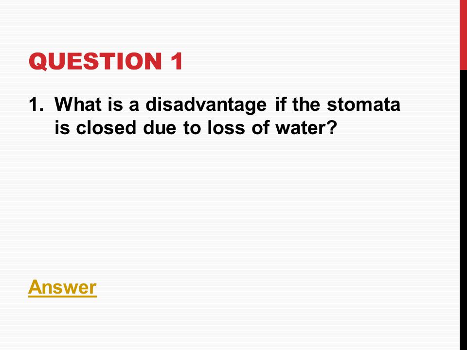 Question 1 What is a disadvantage if the stomata is closed due to loss of water Answer