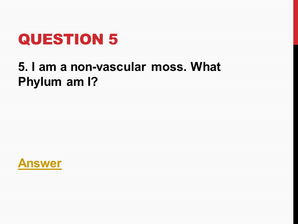 Question 5 5. I am a non-vascular moss. What Phylum am I Answer