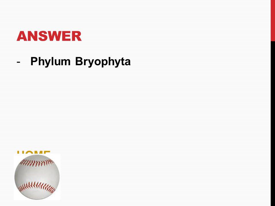 Answer Phylum Bryophyta HOME