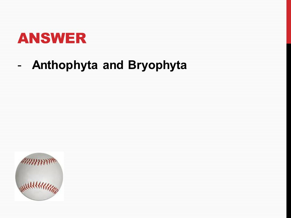 Answer Anthophyta and Bryophyta HOME